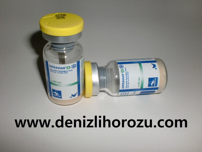 veba-tavuk-ilacları-yucel-isik-1